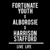 53. Live Life (feat. Alborosie & Harrison Stafford) – Fortunate Youth